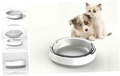 dog cat food bowls glass tilted water